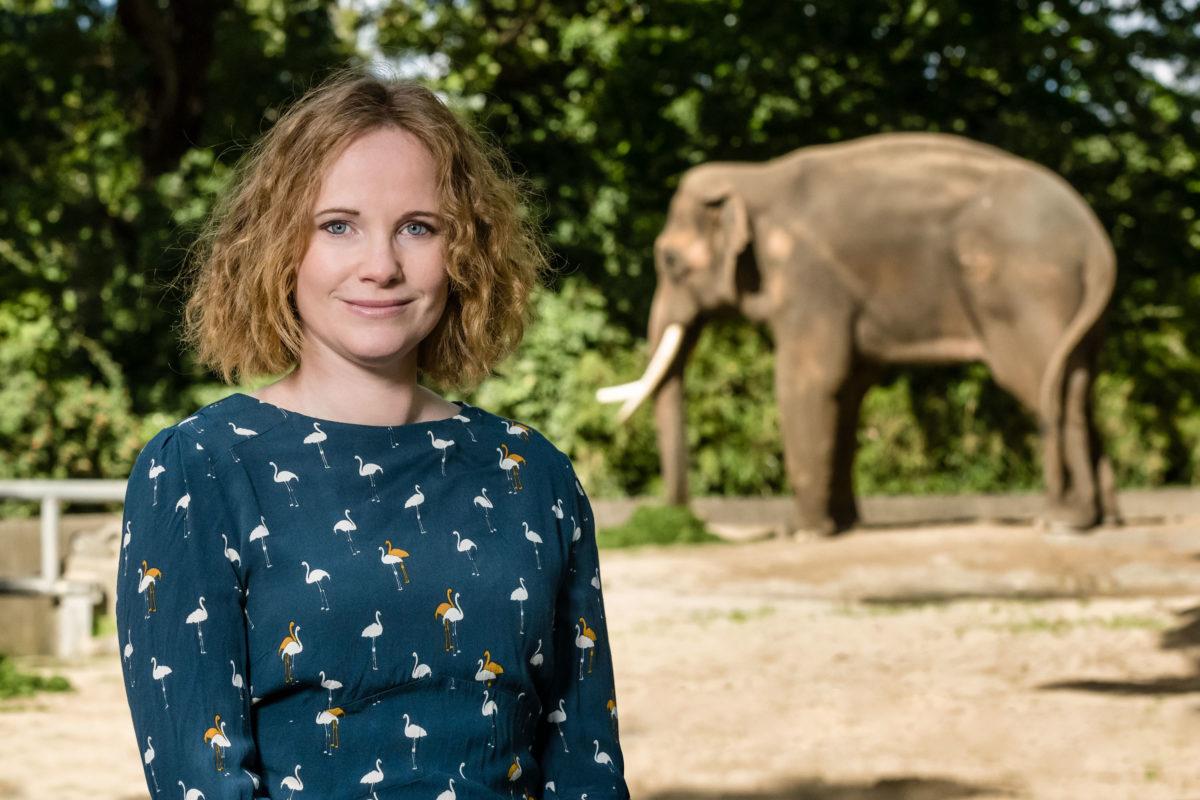 Portraits, Verband der Zoologischen Gärten e.V.